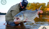 Rhuan-Tigerfish6