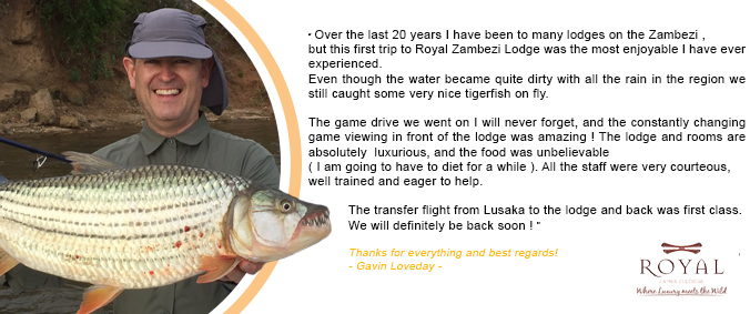 Testimonial-Gavin-Loveday